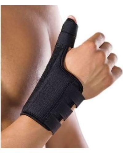Anatomic Help 0501 Thumb...