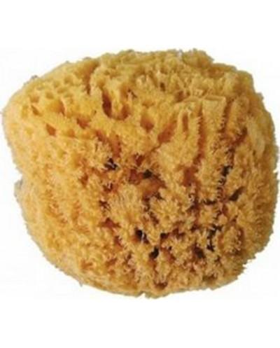 MEDISEI Natural Sea Sponge...